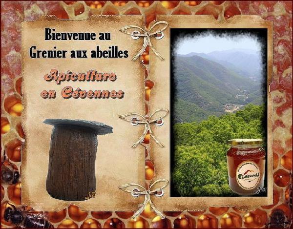 Apiculture en cevennes le grenier aux abeilles