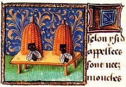 ruches médiévales