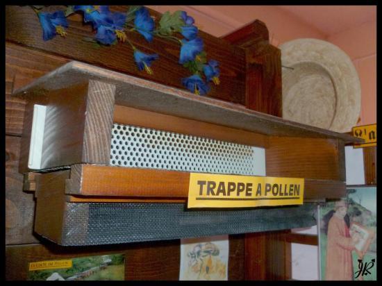 trappe-a-pollen1.jpg
